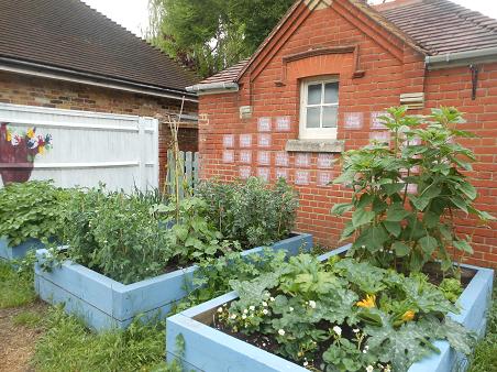 Our Wonderful Garden!